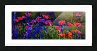Red Poppy field Picture Frame print