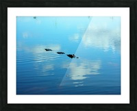 Everglades1 Picture Frame print