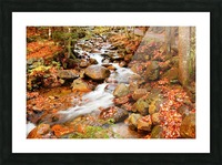 New England autumn stream Picture Frame print