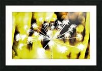 DSC_0163 (3)_LI Picture Frame print