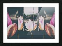 Pink Lotus Collage Picture Frame print