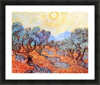 Olive Grove by Van Gogh Picture Frame print