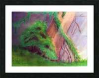 Rainforest Picture Frame print