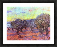 Olive Trees -2- by Van Gogh Picture Frame print