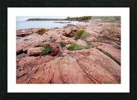 Pink Granite Shore Killarney I Picture Frame print