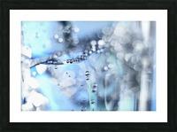 Glacé 14 sept 10 0021 1 Picture Frame print