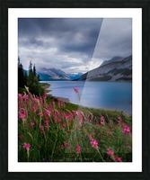 Spray lake  Picture Frame print