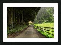 Beautiful Nature Landscape Tree Forest Trees Photography landscape photo Scenery Impression et Cadre photo
