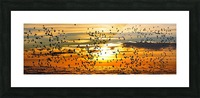 Beautiful Nature Landscape sunrise sunset sun Photography landscape photo Scenery Picture Frame print