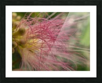 Pink Tangles Picture Frame print