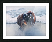 By The Dead Sea Picture Frame print