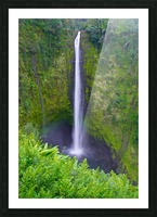 Tropical Falls - Hawaii Vertical Picture Frame print