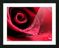 Pearly Petals Picture Frame print