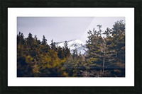 Cape Breton Highlands Picture Frame print