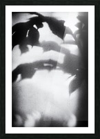 Plant Shadow Picture Frame print