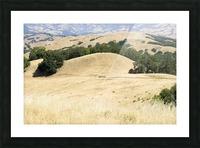 Pepperwood Presserve 1 Picture Frame print