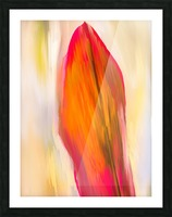 Red Ti  Leaf Digital Painting Portrait 52 70 360px Picture Frame print