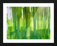 Moving Trees 12 Green Landscape 52-70 360px Impression et Cadre photo