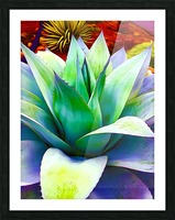 Succulent Dewdrop Picture Frame print