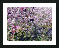 Cherry Tree Picture Frame print