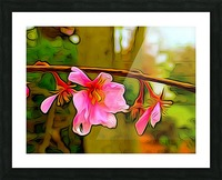 Blossom On a Limb Picture Frame print