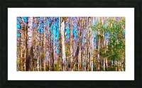A Slice of Florida Trees Picture Frame print