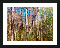 Florida Trees Picture Frame print