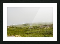 View from Cape Spear Walking trails 15 Picture Frame print