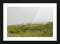 View from Cape Spear Walking trails Picture Frame print