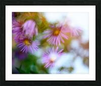 Fleur et ciel Picture Frame print