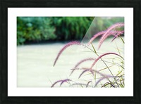 Flora Picture Frame print
