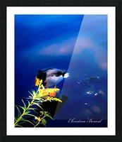 So simple Blue  Impression et Cadre photo