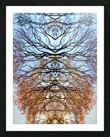 Abstract 4 Picture Frame print