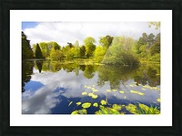CW 029 Altamont Garden, Co.Carlow Picture Frame print