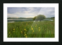 RN 036 Co.Roscommon Picture Frame print