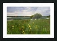 RN 036 Co.Roscommon Impression et Cadre photo