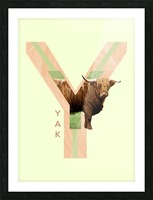 Yak Picture Frame print