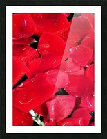 Red Roses Picture Frame print