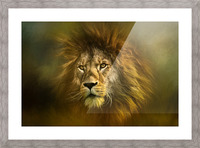 Lion King Picture Frame print