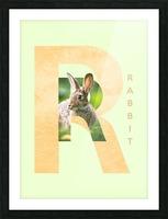 Rabbit Picture Frame print