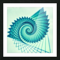 Composition de Nautile Picture Frame print