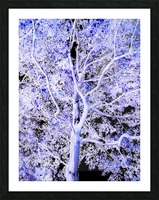 Art of a Violet Blue Tree Picture Frame print