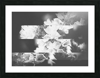 Flower Bells Collage BnW Picture Frame print