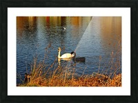 JPT_8829 2 Picture Frame print