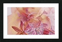 Pink iced flower Picture Frame print