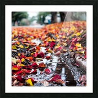 The Colors of Fall Picture Frame print