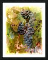 Waiting for Wine Picture Frame print