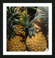 Tropic Picture Frame print