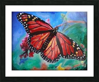 Colorado Butterfly Picture Frame print