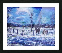 Horse in Colorado Winter Picture Frame print